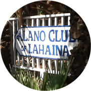 Welcome to the Alano Club of Lahaina